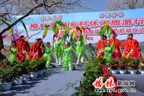 靖边王渠则镇举办首届杏花节