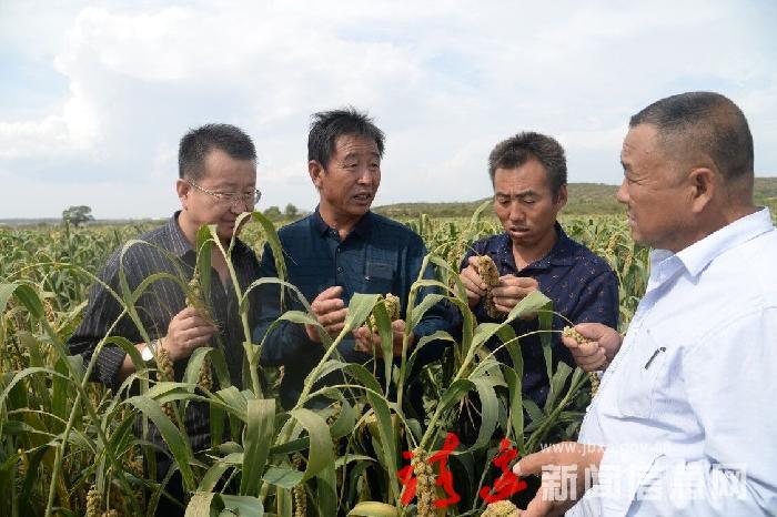 赵庄村:发展集体经济趟出一条新路子