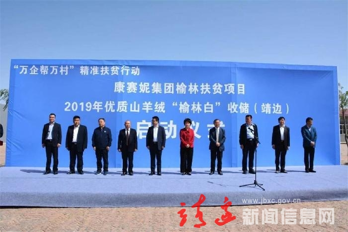 """康赛妮集团榆林扶贫项目2019年优质山羊绒""""榆林白""""收储活动在靖启动"""
