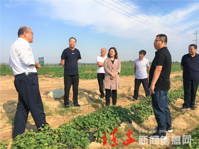 賀湘如調研指導黃蒿界等鎮農業農村工作