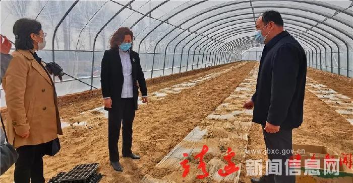 贺湘如调研脱贫攻坚 春耕备耕及农业农村各项工作