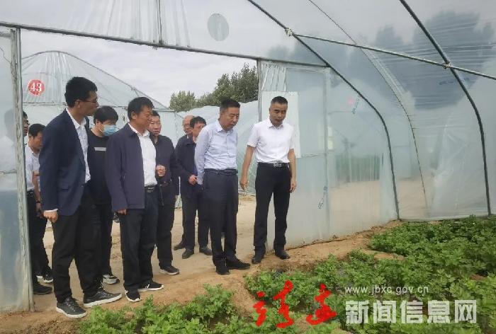 李世书调研乡镇工作时强调: 大力发展现代农业和特色产业 为乡村振兴注入源头活水